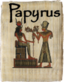 This page relates to the Papyrus scripting language